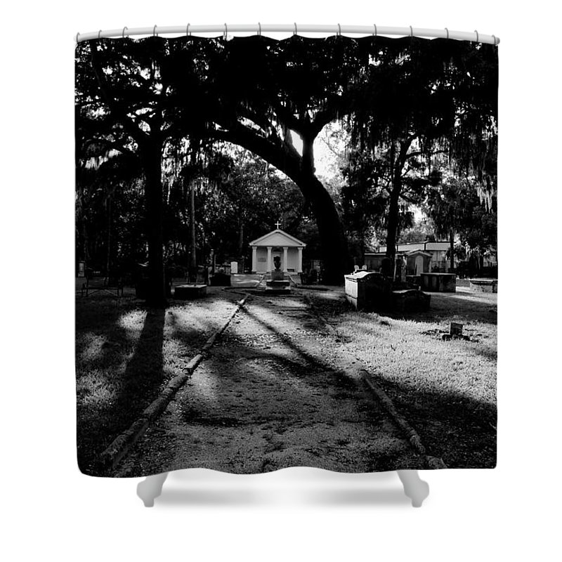 Fine Art Photography Shower Curtain featuring the photograph The Old Road To Eternity by David Lee Thompson