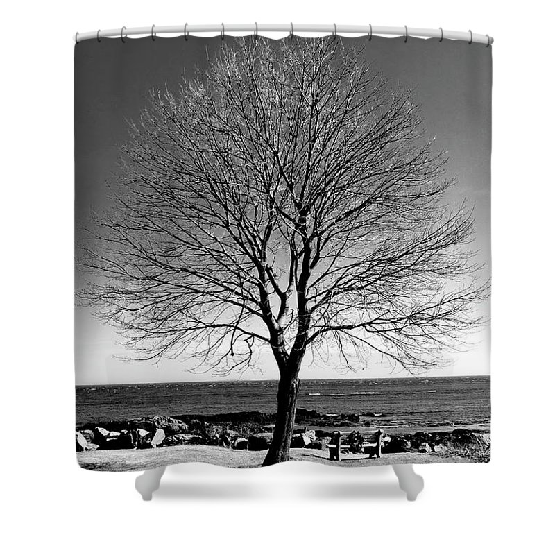 Art Shower Curtain featuring the photograph The Perfect Tree by Greg Fortier