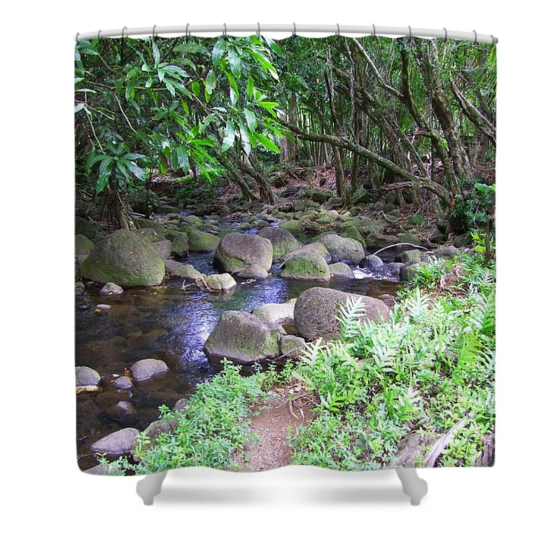 Creek Shower Curtain featuring the photograph The Trail By The Creek by Mary Deal