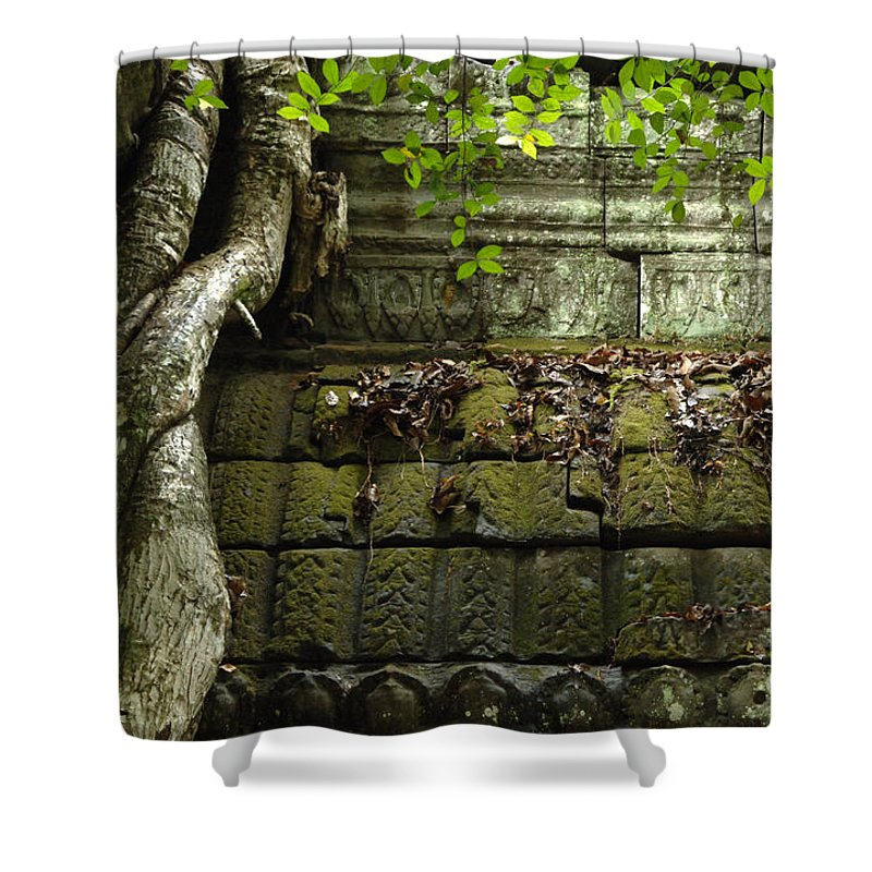 Travel Shower Curtain featuring the photograph The Wall Ta Prohm 2 by Bob Christopher