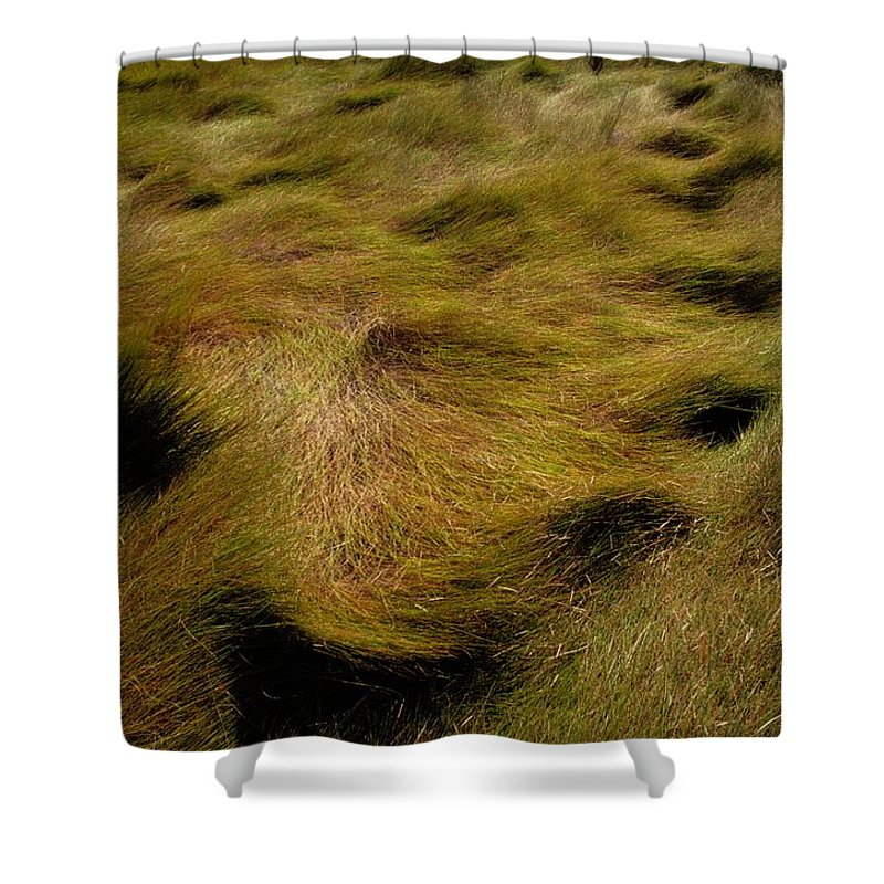Outdoors Shower Curtain featuring the photograph Thick Grasses Blow In The Wind And Form by Todd Gipstein