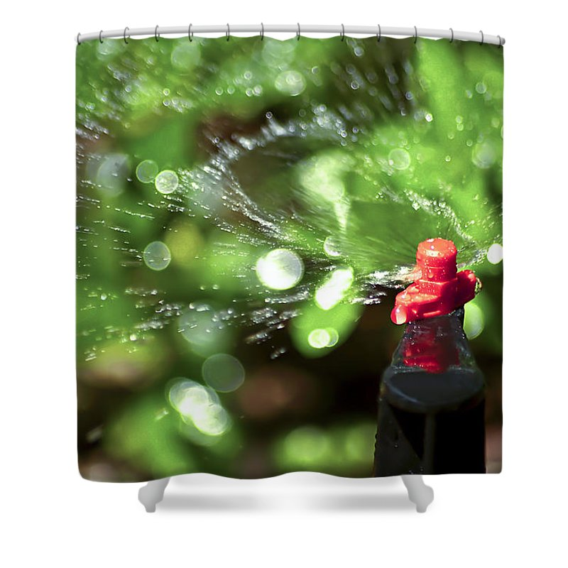 Watering Garden Shower Curtain featuring the photograph Thirsty by Carolyn Marshall