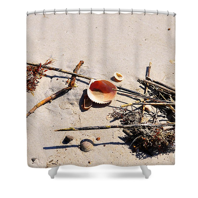 Shell Shower Curtain featuring the photograph Tidal Treasures by Al Powell Photography USA