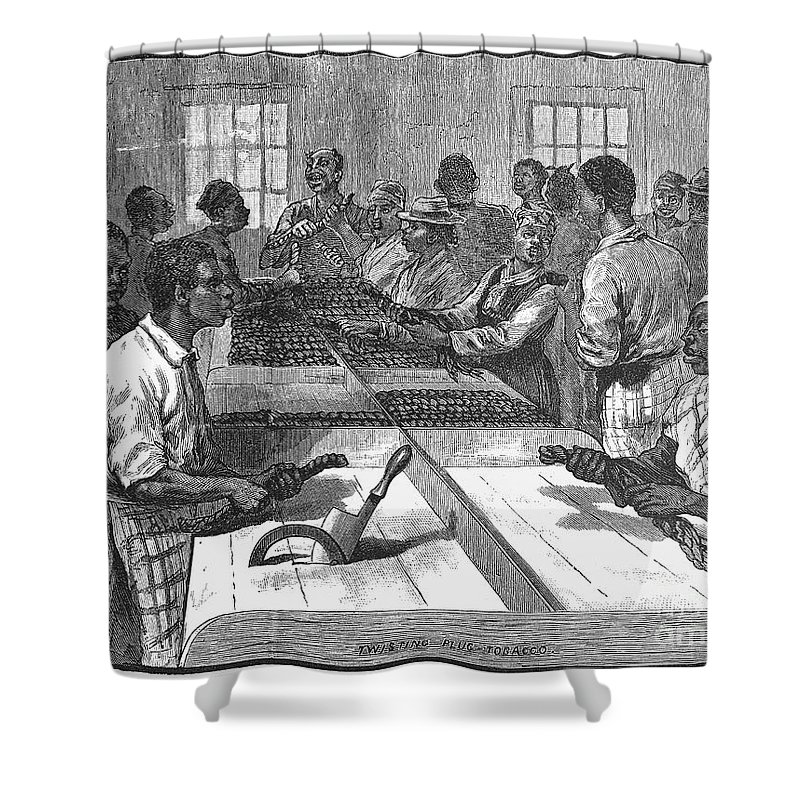 1879 Shower Curtain featuring the photograph Tobacco: Twisting, 1879 by Granger