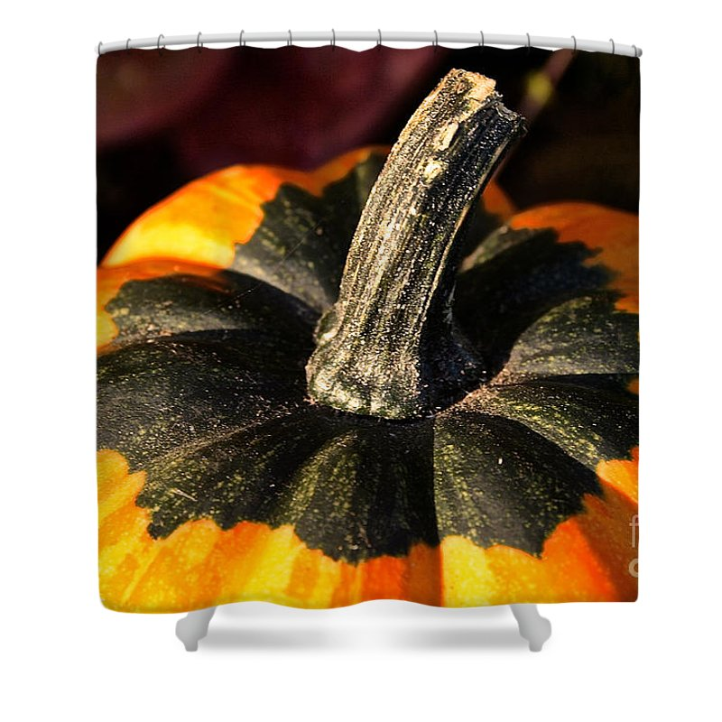 Outdoors Shower Curtain featuring the photograph Topper by Susan Herber