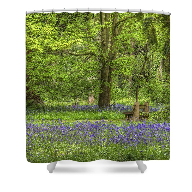 Bambers Shower Curtain featuring the photograph Tranquility by Clare Bambers