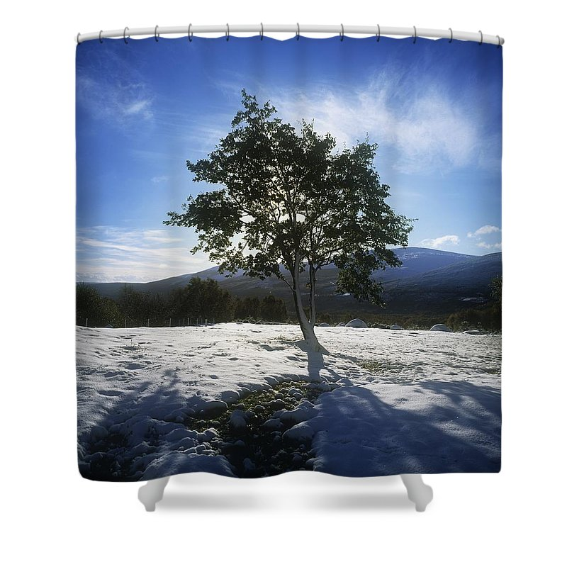 Co Wicklow Shower Curtain featuring the photograph Tree On A Snow Covered Landscape by The Irish Image Collection
