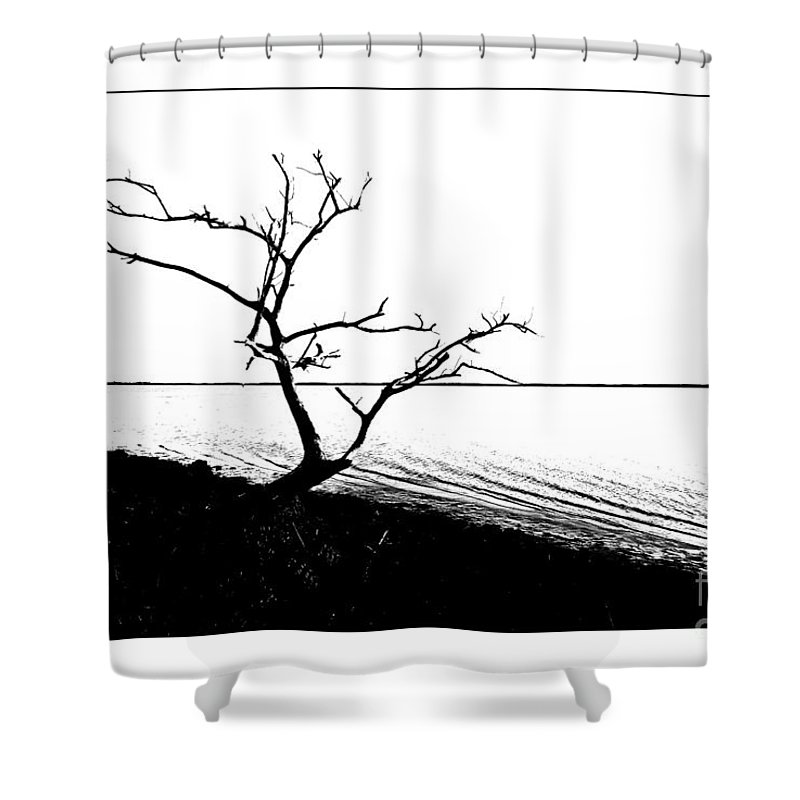 Tree Shower Curtain featuring the photograph Tree Silhouette by Bruce Bain
