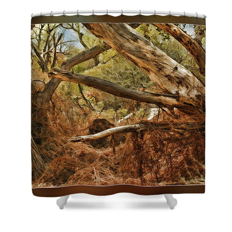 Fine Art Photographers Shower Curtain featuring the photograph Tree Woods by Blake Richards