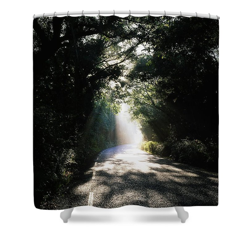Tree-lined Shower Curtain featuring the photograph Treelined Road by The Irish Image Collection