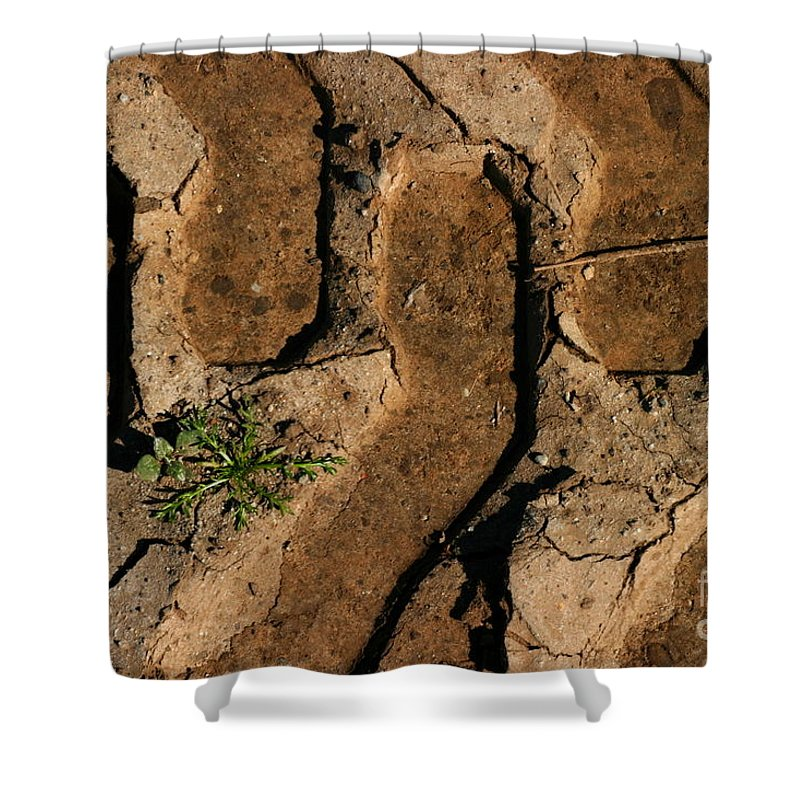 Tire Shower Curtain featuring the photograph Truck Tracks by Henrik Lehnerer