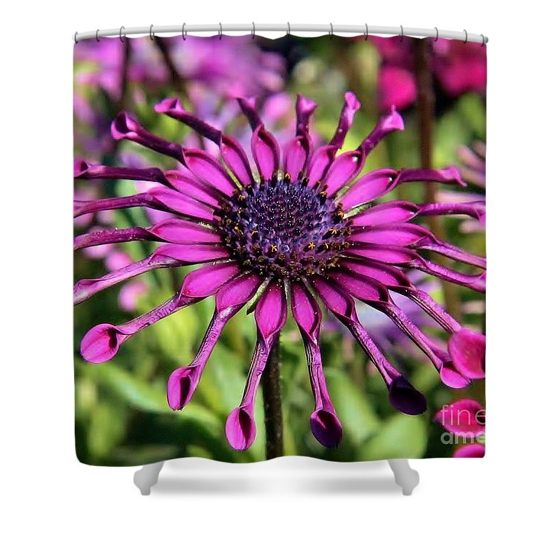 Shower Curtain featuring the photograph Tubes by Diane Greco-Lesser
