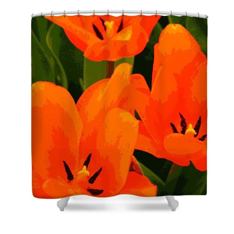 Nature Shower Curtain featuring the photograph Tulip Trio by Chris Berry