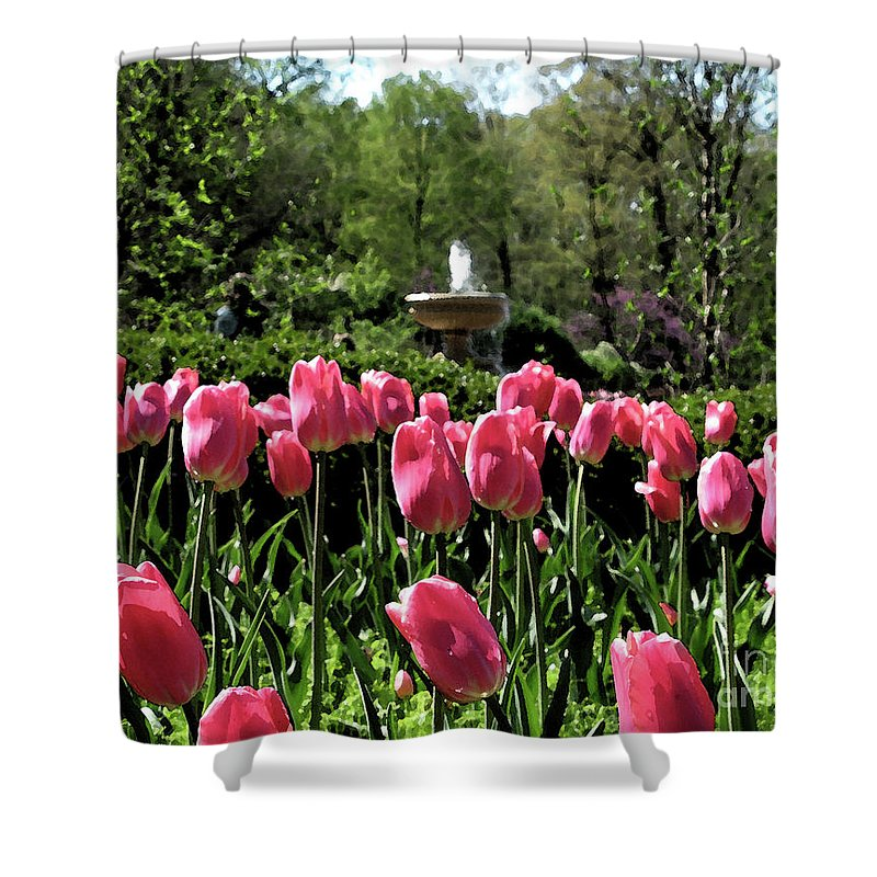 Tulips Shower Curtain featuring the photograph Tulips And Fountain by Jack Schultz