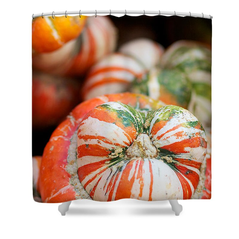 Turbin Squash Shower Curtain featuring the photograph Turban Squash by Brooke Roby