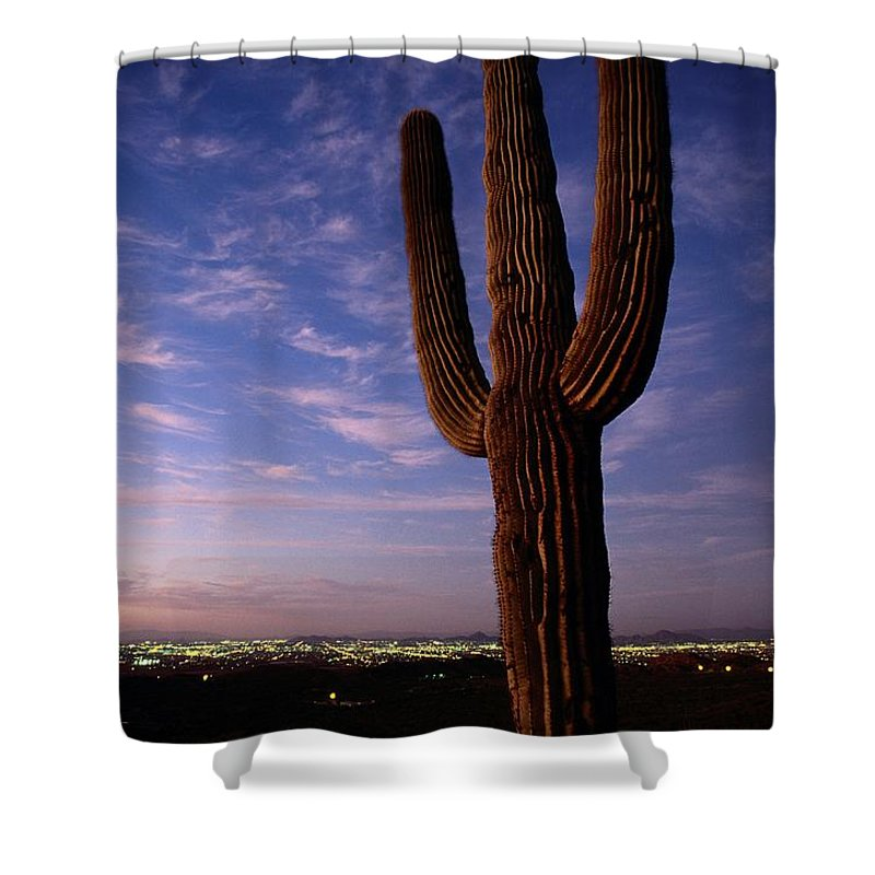 South Mountain Park Shower Curtain featuring the photograph Twilight View Of A Saguaro Cactus by Phil Schermeister