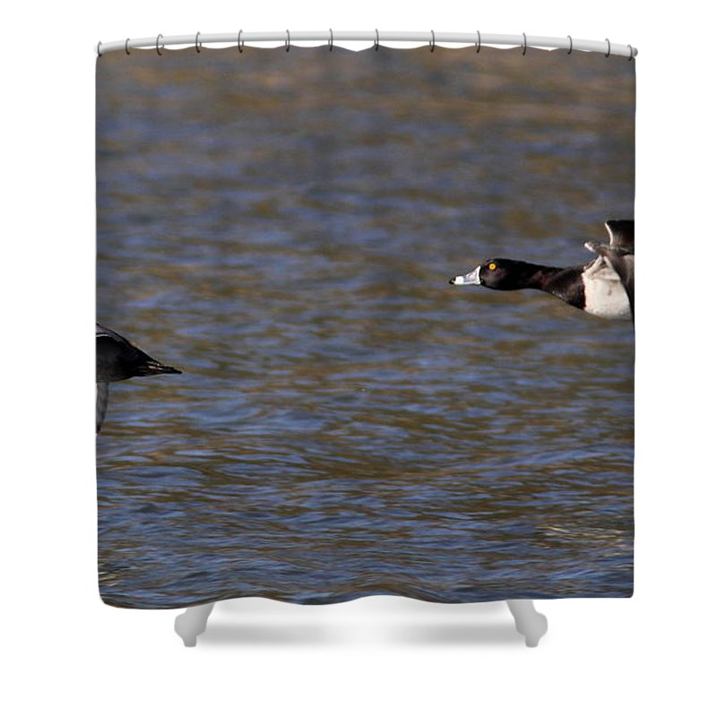 Shower Curtain featuring the photograph Two Guys by Travis Truelove