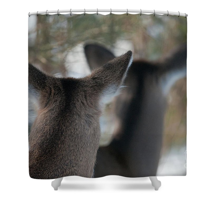 Bronstein Shower Curtain featuring the photograph Two Heads Are Better Than One by Sandra Bronstein