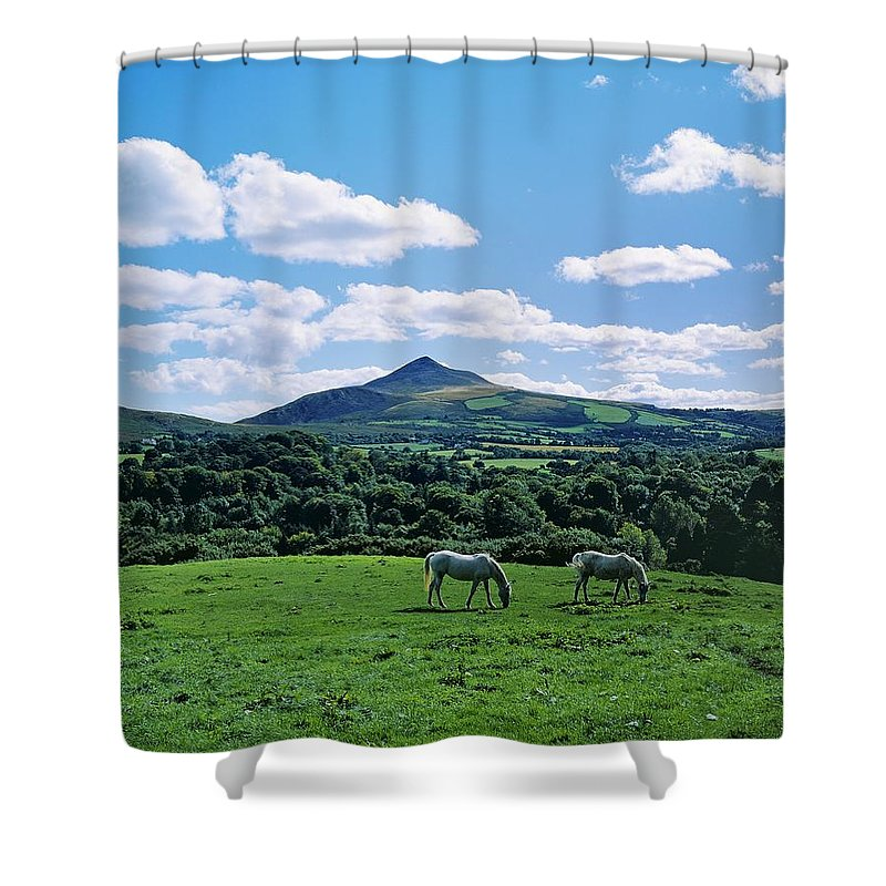 Animal Themes Shower Curtain featuring the photograph Two Horses Grazing In A Field by The Irish Image Collection
