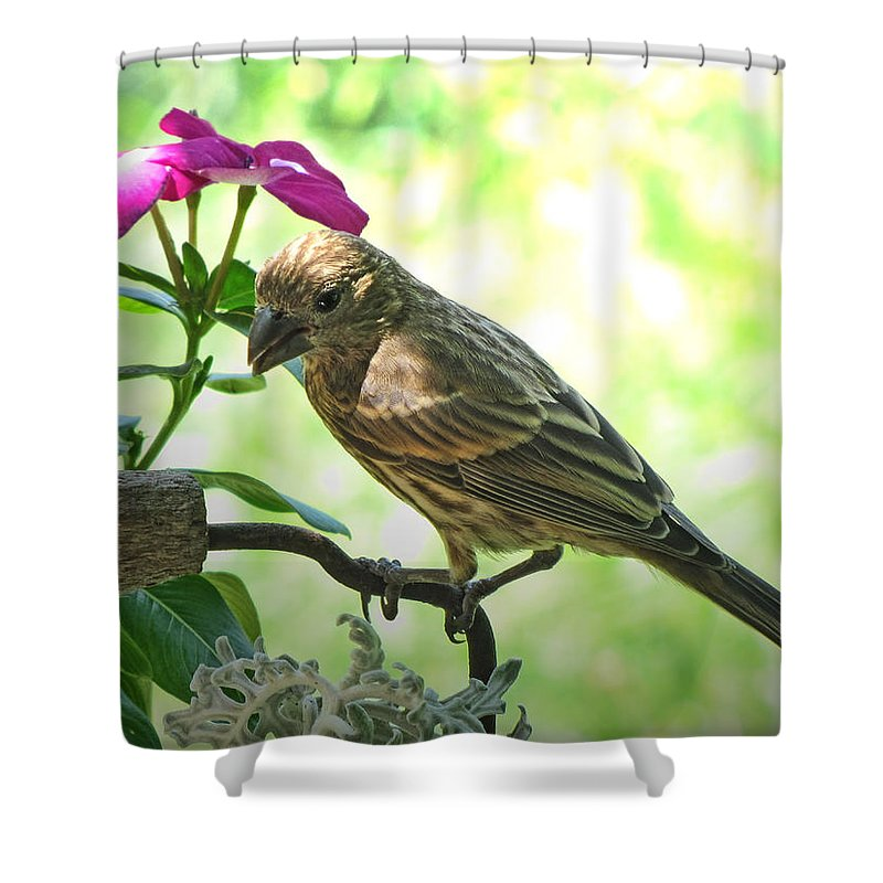 Nature Shower Curtain featuring the photograph Umbrella For The Lady by Debbie Portwood
