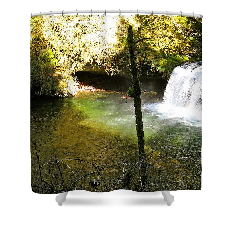 Plunge Shower Curtain featuring the photograph Upper Butte Creek Falls And Plunge Pool by Linda Hutchins