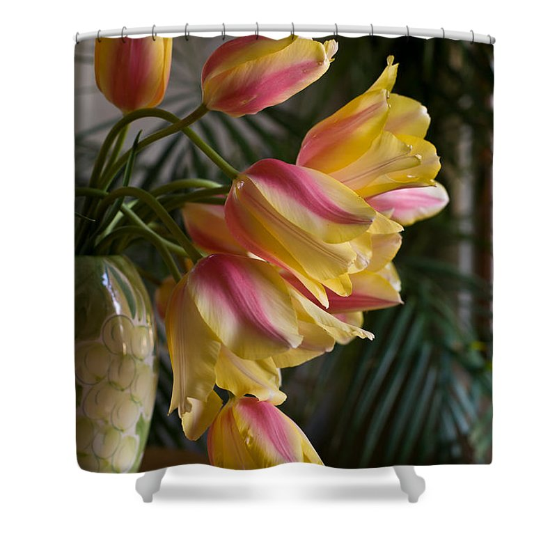 Tulip Shower Curtain featuring the photograph Vase Beauty by Mike Reid