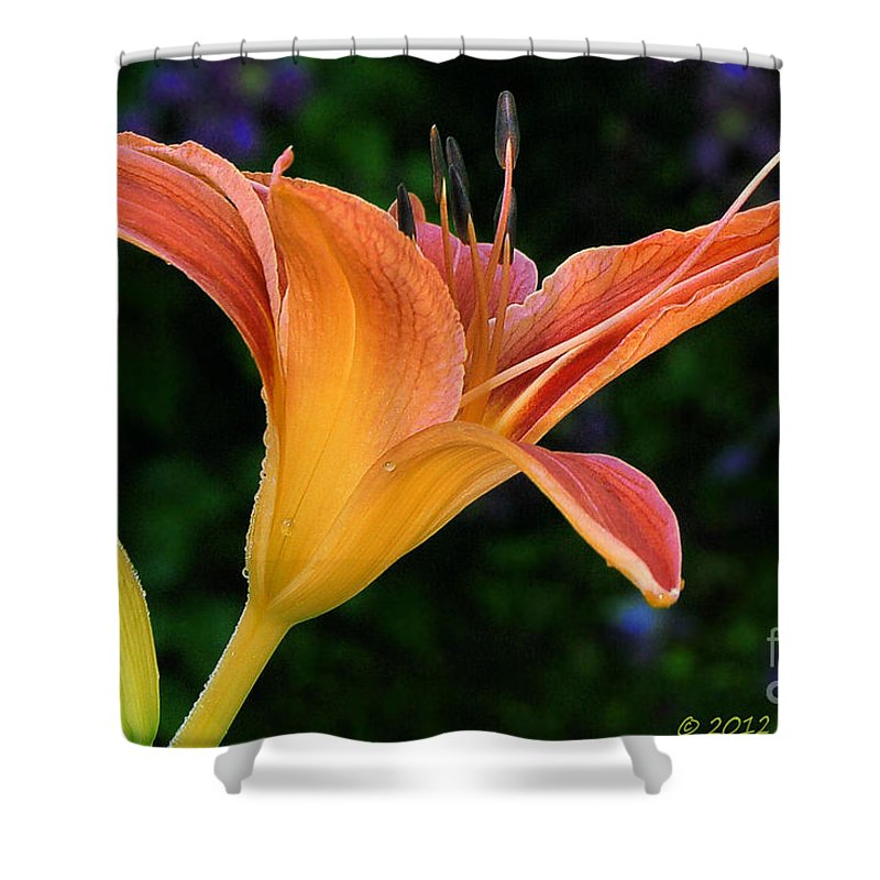 Flower Shower Curtain featuring the photograph Vibrant by Susan Smith