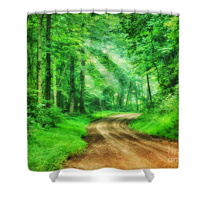 Aged Shower Curtain featuring the photograph Virginia Back Roads by Darren Fisher