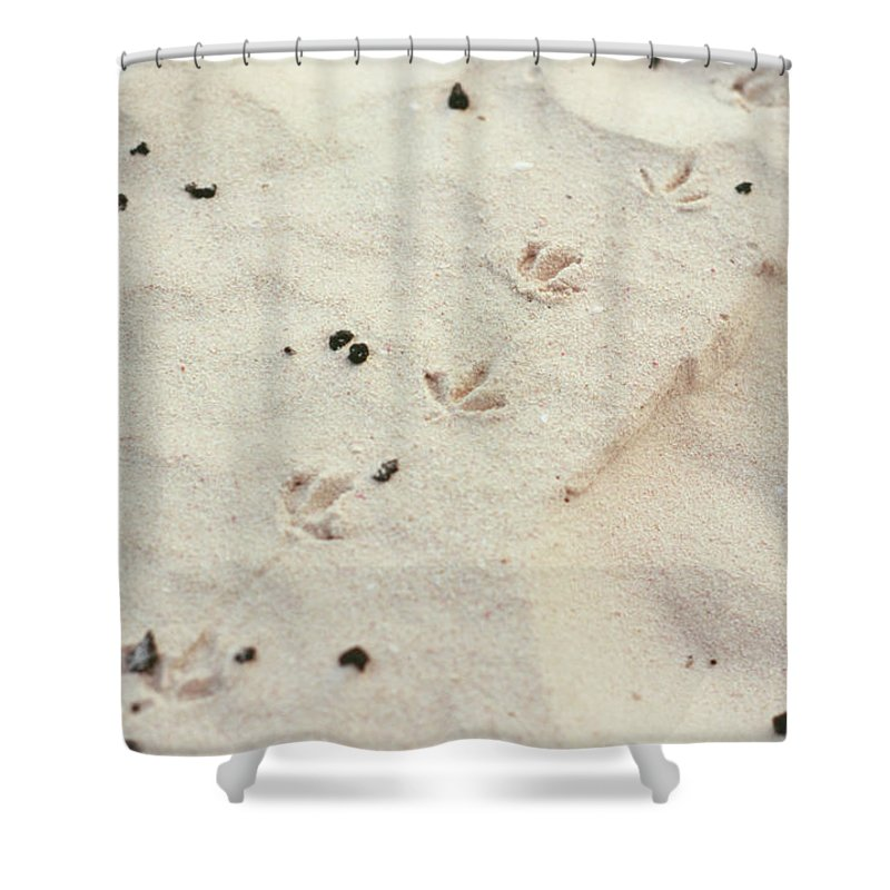 Sand Shower Curtain featuring the photograph Walking Away 03 by Guy Whiteley