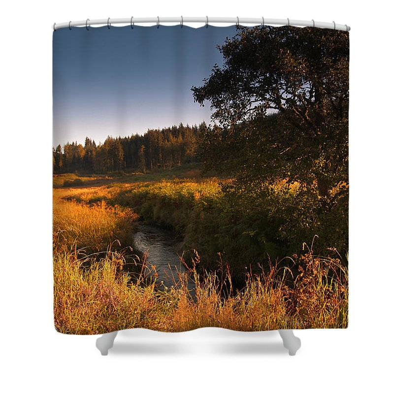 Landscape Shower Curtain featuring the photograph Warm Morning Sun. The Trossachs National Park. Scotland by Jenny Rainbow