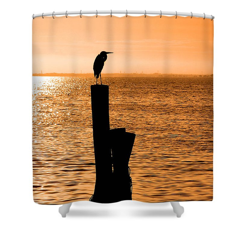 Sunset Shower Curtain featuring the photograph Watching The Sunset by Carolyn Marshall