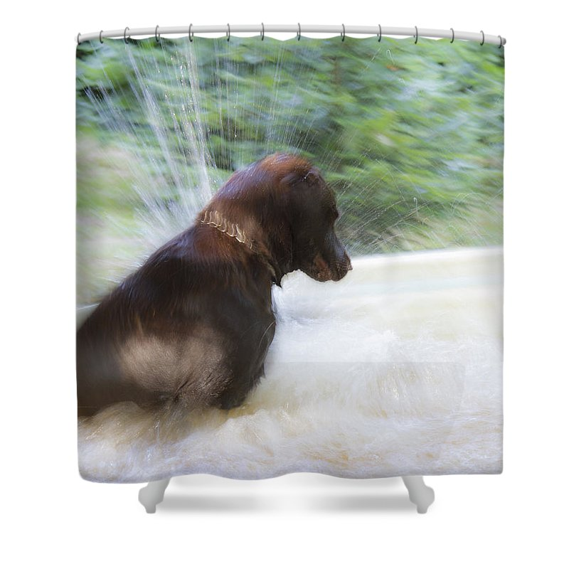 Jean Noren Shower Curtain featuring the photograph Water Fun by Jean Noren