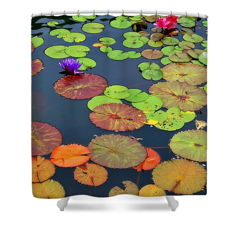 Garden Shower Curtain featuring the photograph Water Lilies I by Nancy Mueller