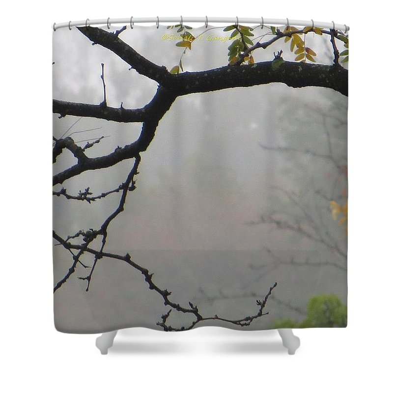 Mist In Morning Shower Curtain featuring the photograph Wednesday Mist by Sonali Gangane