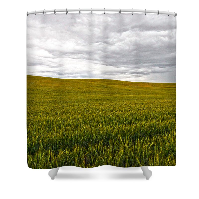 Victorian Shower Curtain featuring the photograph Wheat Field Homestead by Steve McKinzie