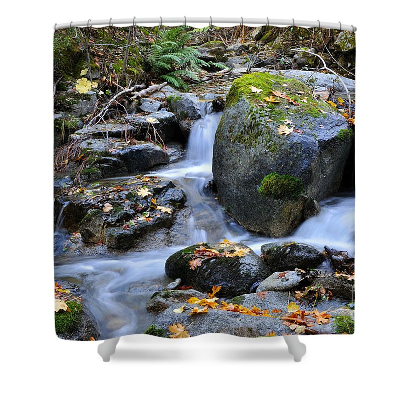 Autumn Shower Curtain featuring the photograph Whisketown Stream In Autumn by Gary Whitton