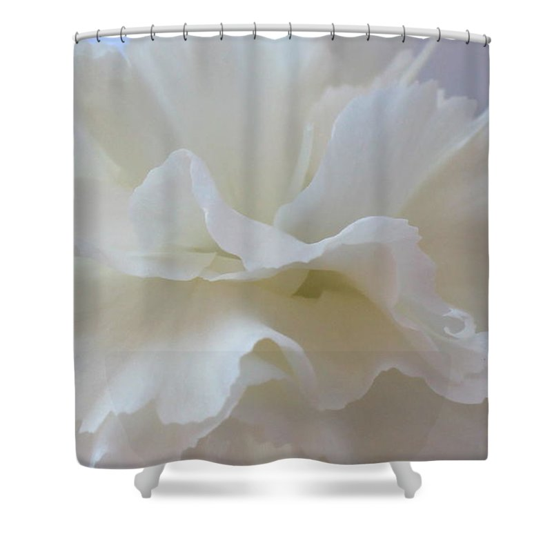 White Shower Curtain featuring the photograph White Carnation by Kume Bryant