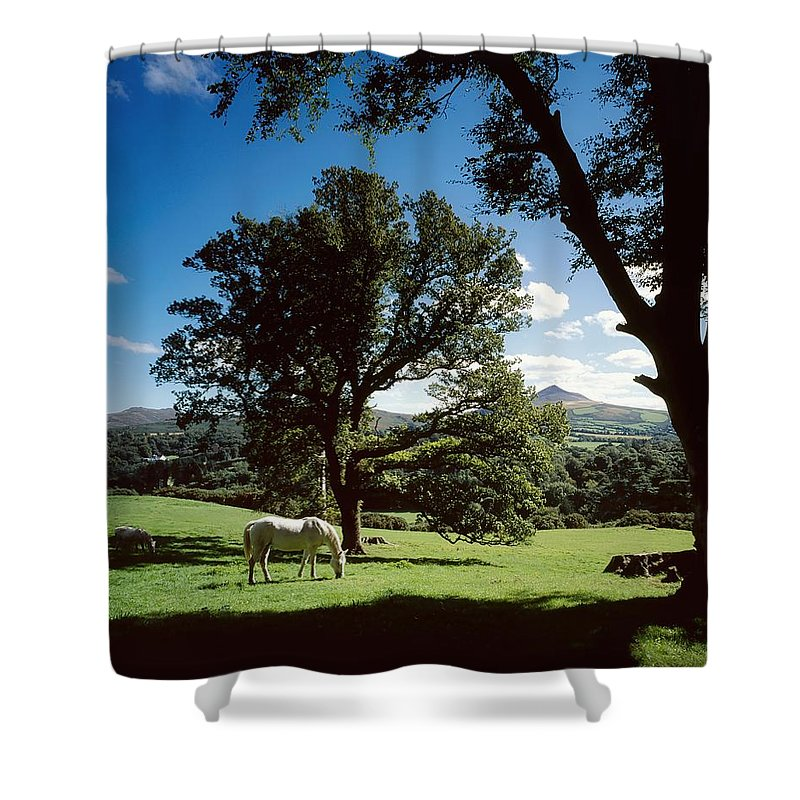 Enniskerry Shower Curtain featuring the photograph White Horse At Powerscourt, Co Wicklow by The Irish Image Collection