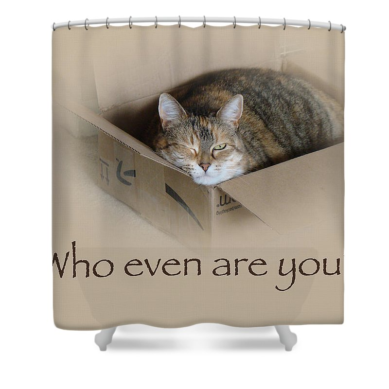Who Even Are You Shower Curtain featuring the photograph Who Even Are You - Lily The Cat by Mother Nature