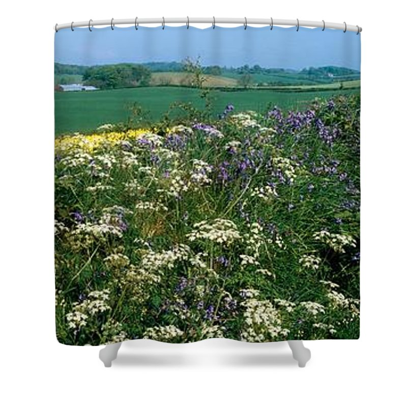 Down Shower Curtain featuring the photograph Wildflowers, Near Seaforde, Co Down by The Irish Image Collection