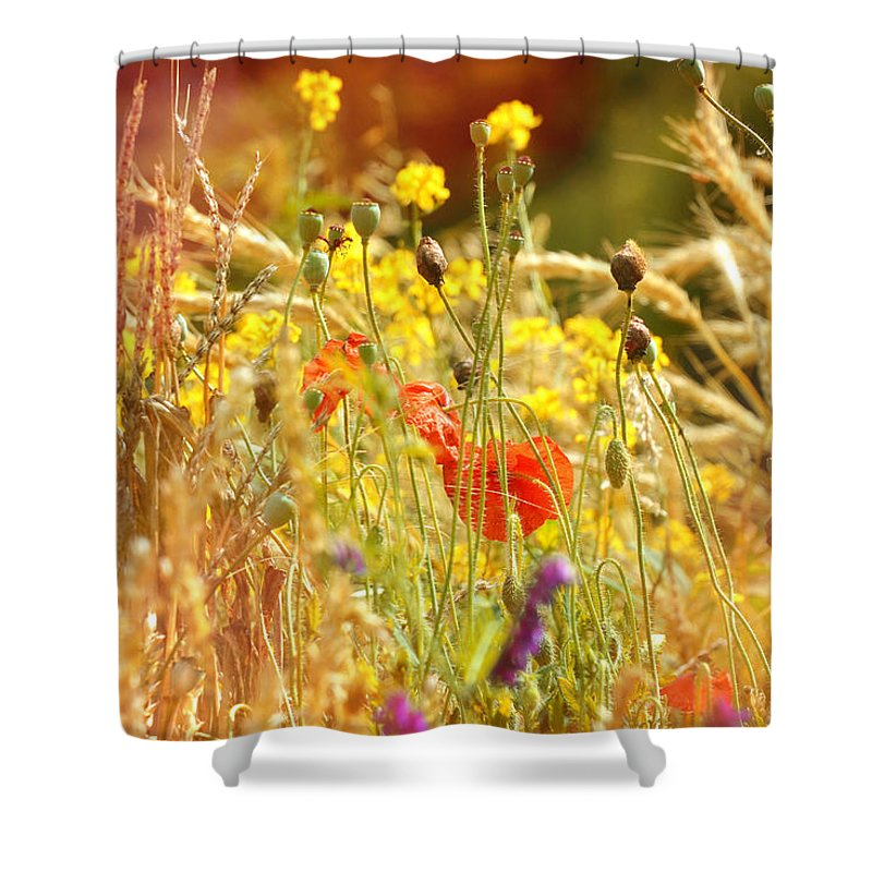 Landscape Shower Curtain featuring the photograph Wildlife by Studio Yuki