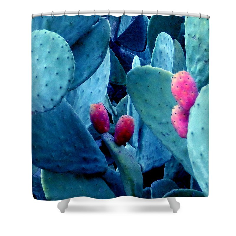 Colette Shower Curtain featuring the photograph Winter In Spain by Colette V Hera Guggenheim