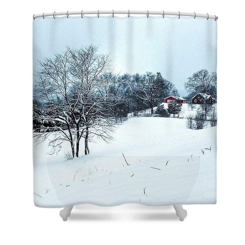 Alone Shower Curtain featuring the photograph Winter Landscape 1 by Dan Stone