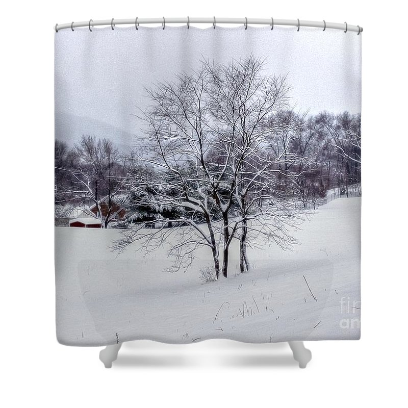 Alone Shower Curtain featuring the photograph Winter Landscape 6 by Dan Stone