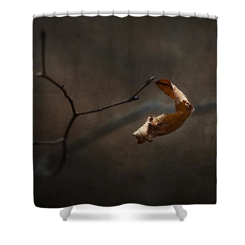 Winter Shower Curtain featuring the photograph Winter Wear by Ron Jones
