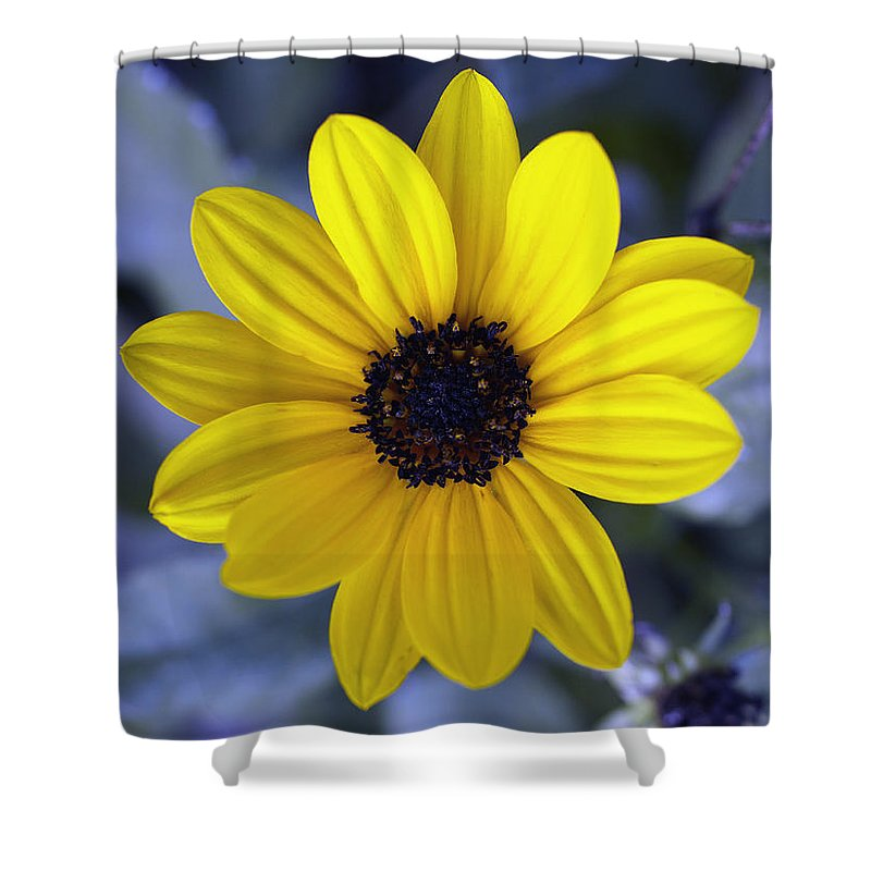 Abstract Shower Curtain featuring the photograph Yellow Flower 4 by Skip Nall