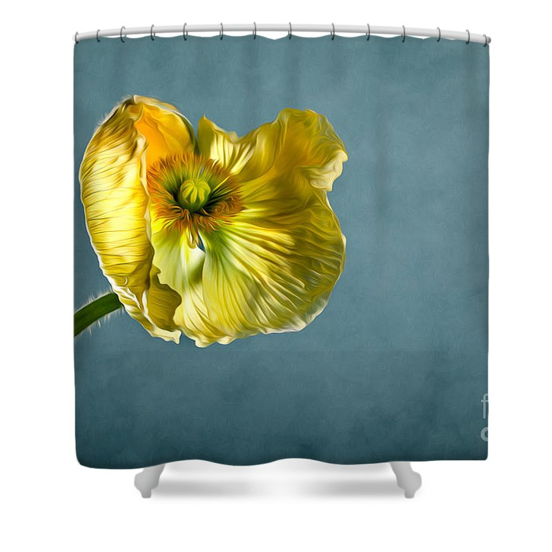 Poppy Shower Curtain Featuring The Photograph Yellow By Nailia Schwarz