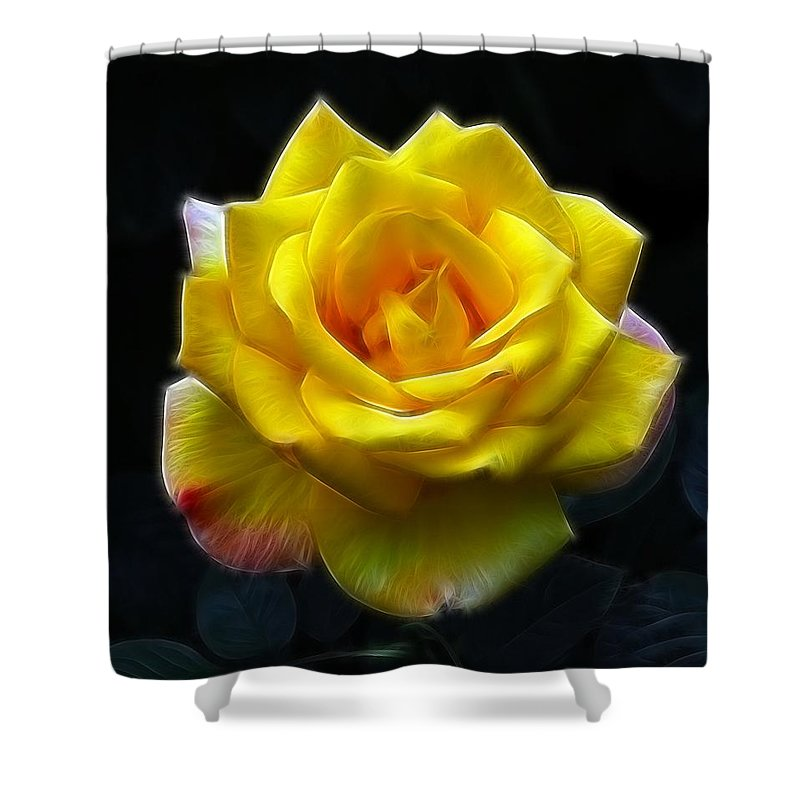 Yellow Rose In The Moonlight.rose Shower Curtain featuring the photograph Yellow Rose In The Moonlight by Georgiana Romanovna