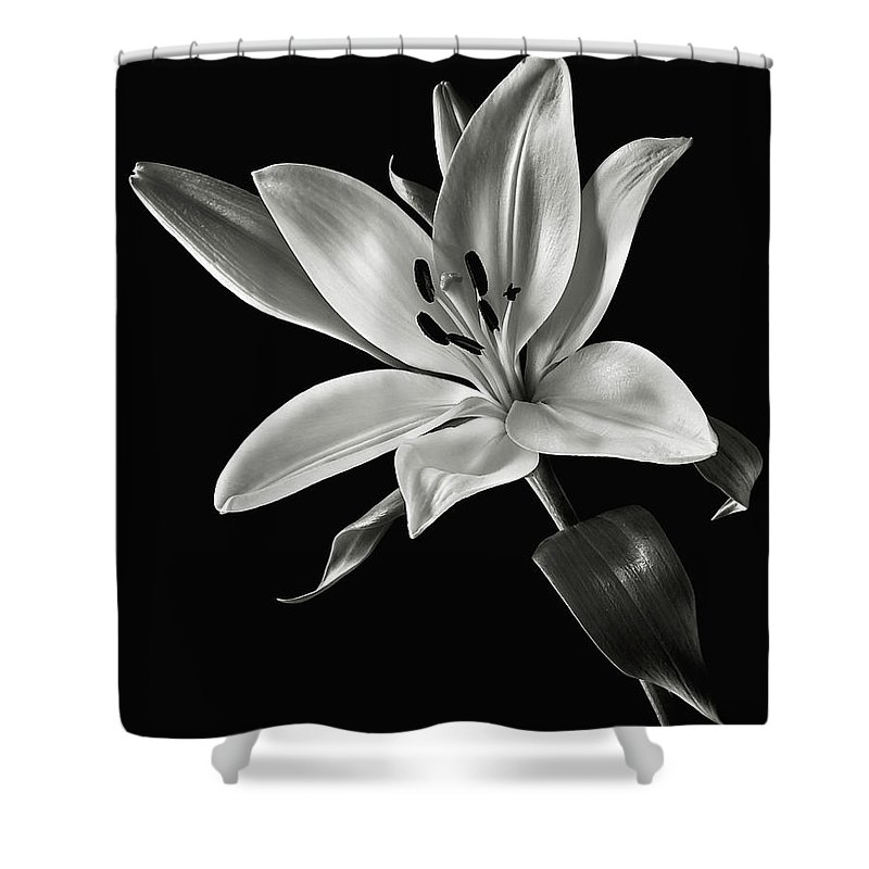 Flower Shower Curtain Featuring The Photograph Yellow Tiger Lily In Black And White By Endre Balogh