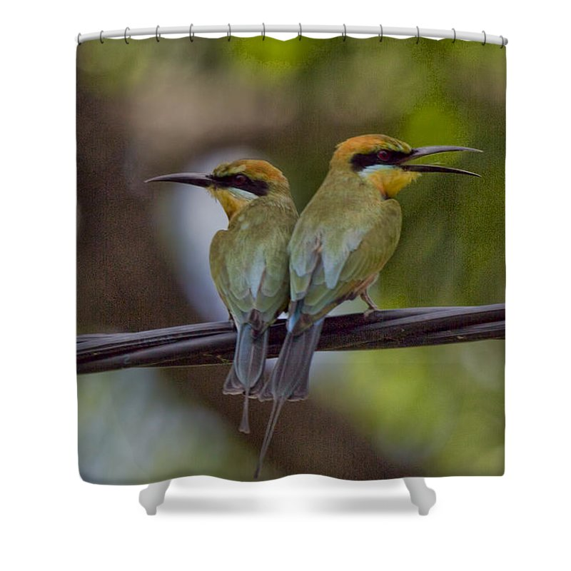 Rainbow Bee-eaters Shower Curtain featuring the photograph You Watch My Back and I Watch Yours V2 by Douglas Barnard